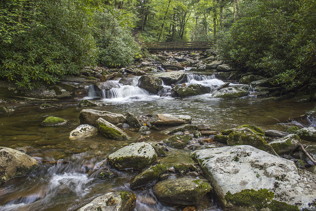 Road Prong is one of many Great Smoky Mountain streams in the Great Smoky Mountains National Park