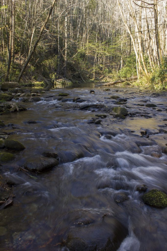 West Prong Little River in the Smokies