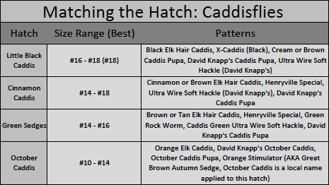 How to match caddisfly (caddis) hatches in the Great Smoky Mountains National Park