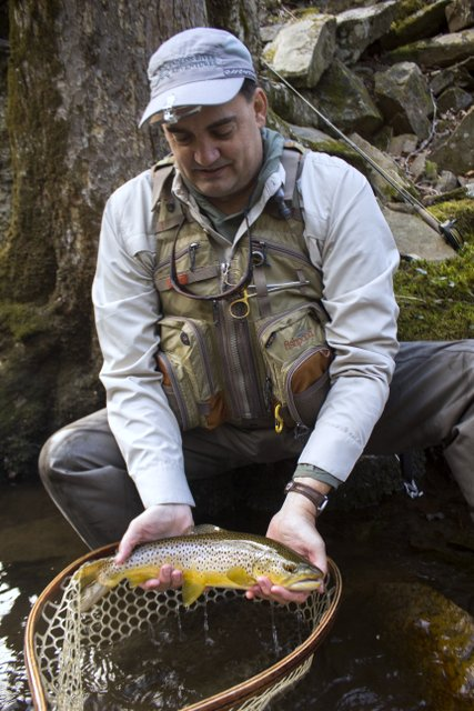 A large brown trout caught while dry fly fishing in the Great Smoky Mountains National Park on Little River