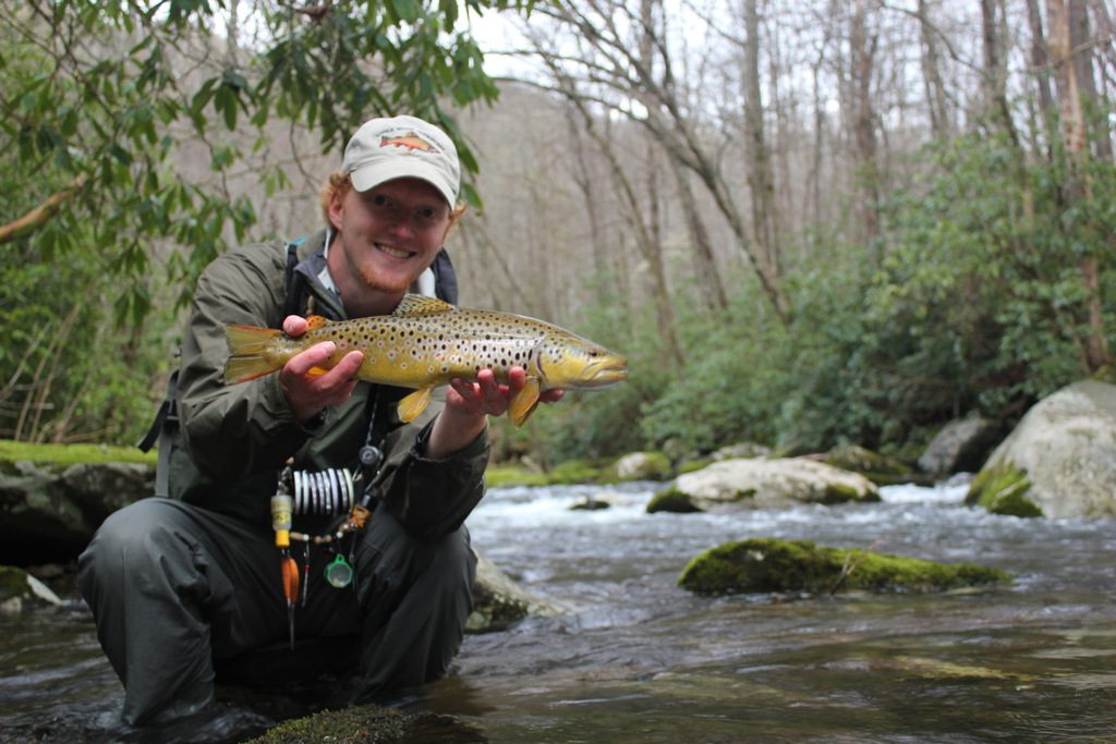 Fishing Little River in the backcountry sometimes yields trophy brown trout