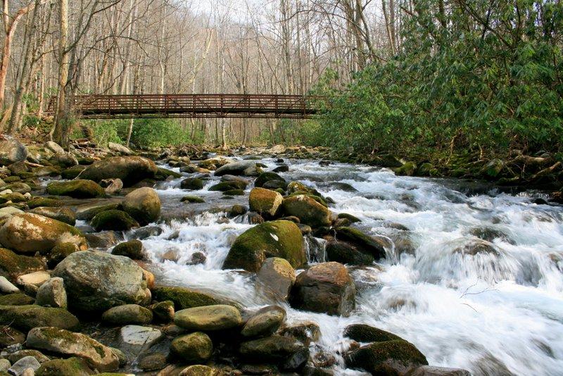 Goshen Prong Trail Bridge