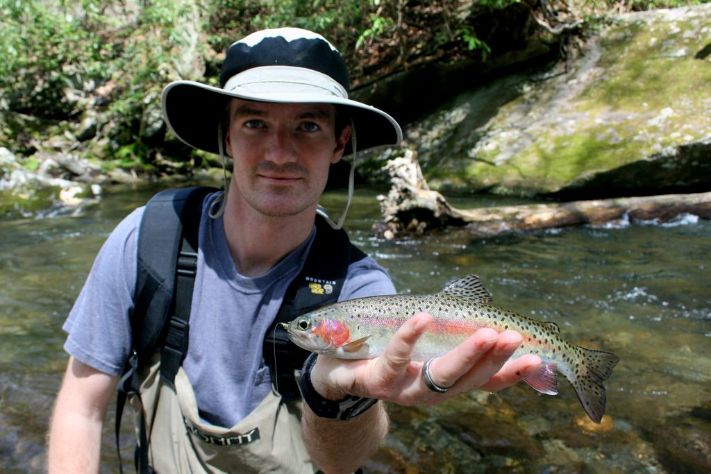 Wild Rainbow Trout on Little River caught while fishing with Great Smoky Mountains fly fishing guide David Knapp and practicing the high sticking technique