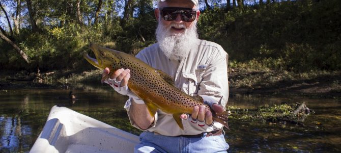 2016 Year in Review: Guided Tailwater Trips