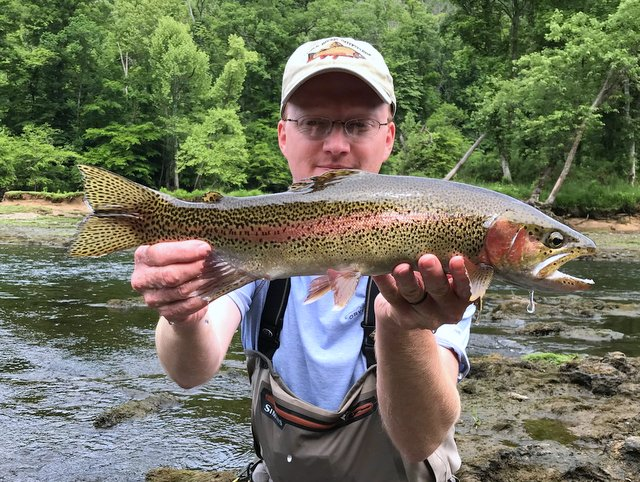 Rainbow trout caught by Clinch River fly fishing guide David Knapp