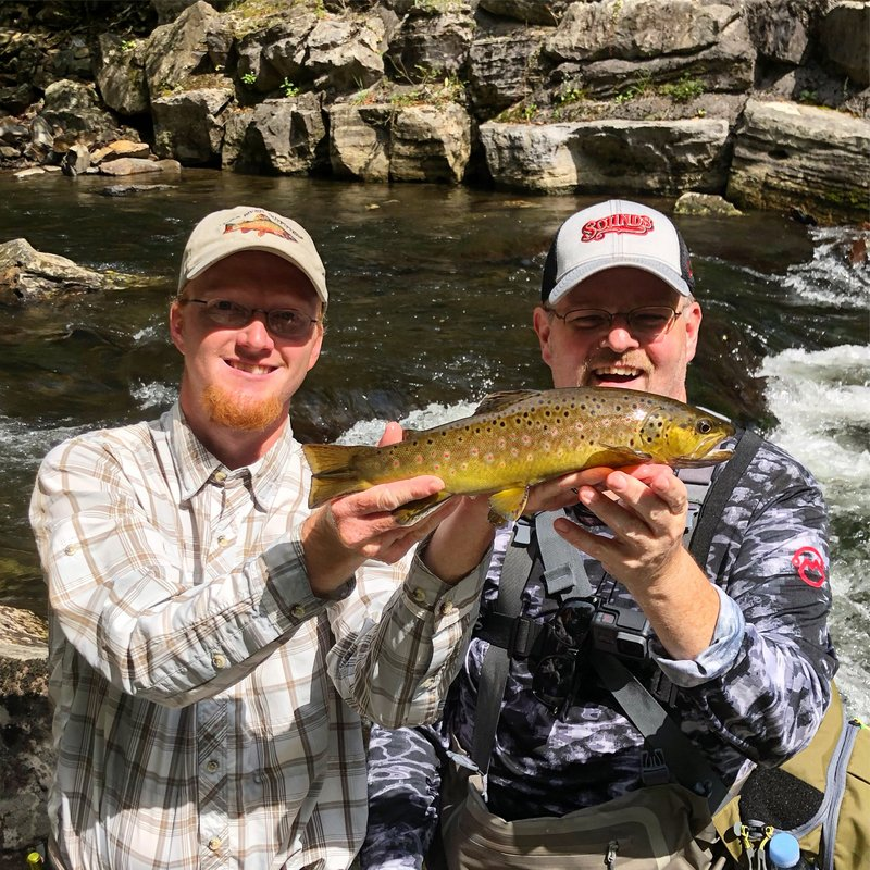 A large wild brown trout caught in the Great Smoky Mountains on a guided fly fishing trip with Trout Zone Anglers